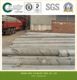 Pijp van het Roestvrij staal van ASTM A511 Tp304h de Naadloze