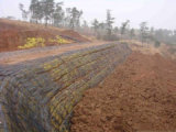 Пламя сохраняя стен - retardant Geogrid PP однонаправленное/одноосное