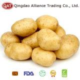 Haut de la qualité des pommes de terre fraîches entières