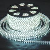 220V SMD5050 imprägniern Seil des Feiertags-Dekoration-Licht-LED