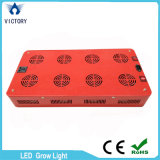 Full Spectrum 600W LED SABUGO crescer Light