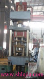 Prensa hidráulica automática del polvo (YQ79-200)