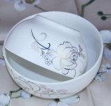 Jeu de Deinner de vaisselle de restaurant de céramique de la Chine
