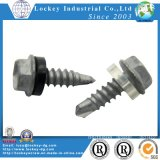 Hex Washer Head Self Drilling Screw mit Washer