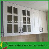 Projeto de vidro da porta da madeira de gabinete do projeto simples