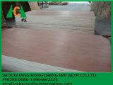 Madera contrachapada de China para los muebles/la madera contrachapada de la construcción