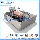 Galvanizado en caliente las cerdas del parto la caja para porcicultura Equipo
