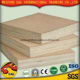 Commercial Timber Poplar/Birch/Prick 1220*2440*18mm Plywood for Furniture