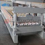 Le type de machine à profiler de décisions du panneau de toit
