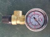 쪼개지는 압력 시스템 태양 펌프 역 Sp228