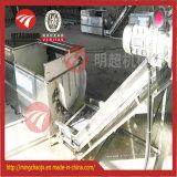Matériel automatique de lavage et d'écaillement de racine alimentaire de racine de type de balai