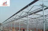 Venlo 유형 온실 강철 구조물