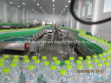 Automatic Pet Bottled Mineral Water Filling Machine / Production complète