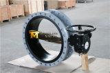 Двойная ая клапан-бабочка Dn750 с диском C95400 (CBF02-TA01)