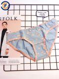 Eco Permit를 가진 새로운 Design Lady Underwear Women Sexy Lingerie Underwear Women Slip