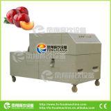 Frutas automático eléctrico Pêssego Abacate Alperce Cherry Olive Plum Data Pit Removedor de Pedra