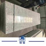 La pierre naturelle chinois fleur poli la moins chère Pearl Curbstone 383 Granite gris