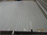 Tubo de acero inoxidable/tubo inconsútiles (TP310S)