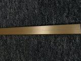Raso personalizzato 6063 anodizzato in d'argento/nero/nell'oro/profilo di alluminio d'ottone dell'espulsione