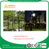 Indicatore luminoso solare All Night del giardino 12W del lavoro dell'indicatore luminoso di Dawm dello schermo della luna della lega di alluminio di alta qualità
