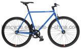 700c 최신 판매 싼 단 하나 속도 조정 기어 자전거는 Sy-Fx70010를 자전거를 탄다