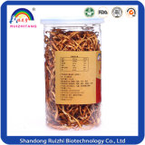 Natural Cordyceps Fungus for Improving Sleeping