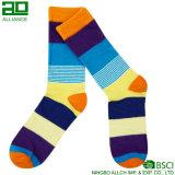 Bunter Sport-lange Mannschafts-Kleid-Zoll-Socken