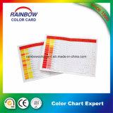 다채로운 주문을 받아서 만들어진 페인트 시스템 색깔 카드 책