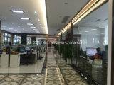 Neuer Entwurfs-modernes Wohnzimmer-echtes Leder-Sofa (SBL-9167)