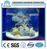 Modificado para requisitos particulares alrededor del acuario de acrílico material de acrílico