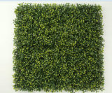 Moda artificial plantas de jardinería para la decoración de la cubierta de pared verde