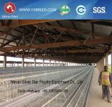 Cages argentées de poulet de matériel de volaille d'étoile pour la couche et le grilleur