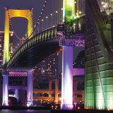 12 * 10W RGBW impermeable LED PAR iluminación luz de la etapa de eventos al aire libre Jardín de iluminación