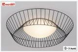 現代表面の円形の台紙LEDの天井灯のセリウムUL