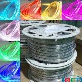 Striscia esterna impermeabile 5050 RGB della fabbrica LED con il regolatore a distanza