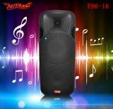 Double de Feiyang/Temeisheng haut-parleur de pouvoir de Bluetooth de grand pouvoir de 15 pouces grand----F86-16