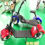 緑ソースサポートお偉方が付いている電気移動性のスクーター