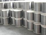 202, 301, 302, 304, 304L'acier inoxydable 316L sur le fil