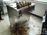 最上質の乾燥させたココナッツ生産ライン
