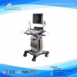 Ob/Gyn, Vasular, Urologie, Hart4D Kleur Doppler met Cw, Dicom
