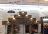 IP67 12VAC/DC 110lm/W LED Hardscape Steplight
