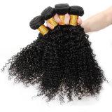 最上質の加工されていない100%のブラジル人の毛の実質の人間のバージンの毛