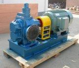 Bomba hidráulica de engrenagem dupla para o reator químico