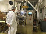 De Machine van de Verpakking van de Zak van het Poeder van de wei