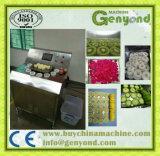 Hami melão fatiar máquina para venda na China