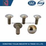 Großhandelsauf lagerbefestigungsteil-große runde Schreibkopfschlitten-Schraube