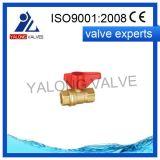 Soupape de gaz en laiton (YL514)