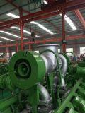 400kw 전력 플랜트 시멘스 발전기를 가진 물에 의하여 냉각되는 Biogas 엔진 발전기