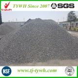 Polvo activo a base de carbón del carbón