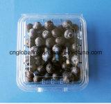 Коробка ясной устранимой пластичной голубики контейнера голубики 125 грамм упаковывая упаковывая